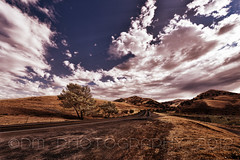 Road to Black Diamond (BluAlien) Tags: trees sky clouds landscape nikon hills 28 d800 blackdiamondmines 1424mm