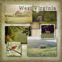 West Virginia Collage (Denise @ New Mercies I See) Tags: texture birds rural landscape countryside farm wildlife country scenic westvirginia processing mammals appalachia lewiscounty nikond90 hcpd kimklassen onethousandgifts hackerscreekpioneerdescendants beyondlayers fivefactfriday