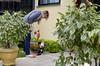 O passeio das gordas (: (A Cris!) Tags: laranja melissa jardim gata coleira