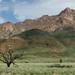 ... montanha mais alta da Namibia