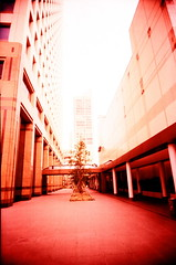 inbetween (nuo2x2toycam) Tags: plaza building indonesia xpro san fuji slim cross wide jakarta process clover provia processed ultra senayan uws competing toycam sentra nuo2x2 cloversan nuo2x2toycam
