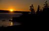 Jones Island Sunset, San Juan Islands (tacoma290) Tags: trees sunset sea vacation sky orange reflection silhouette island nikon pacificnorthwest pugetsound sanjuanislands pnw jonesislandstatepark jonesisland jonesislandsunsetsanjuanislands
