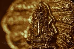 Lord Ganesha -  Remover of Obstacles (^Lakshman^) Tags: macro japan canon eos design ganesha colours dof god bokeh spiritual hindu hinduism gifu tamil 2012 lakshman pillayar vinayagar 50d canonef100mmf28macrousm canoneos50d lakshmanphotography