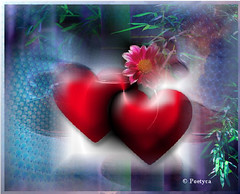 Da cuore a cuore (Poetyca) Tags: featured image sfumature poetiche poesia