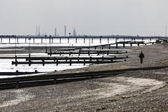 silhouetted stroller (Cranswick852) Tags: 0771 canon canon5d canon5dmk3 canon5dmkiii ef100400mmf4556lisiiusm southend beach coast seaside sea groyne silhouette