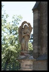 Notre-Dame-du-Spasme - La Livinière (DavidB1977) Tags: france languedocroussillon nikon d7100 hérault lalivinière notredameduspasme angelot 35mm ais
