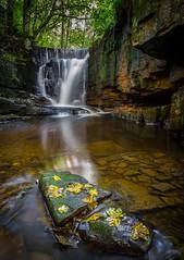 Solitude (Furry Chalk Bag Images) Tags: waterfall longexposure dearden clough edenfield lancashire water leaves rocks colors landscape rossendale river