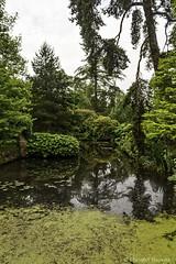 Garden view (cstevens2) Tags: kent lamberhurst scotneycastle unitedkingdom garden tuin grootbritanni verenigd koninkrijk greatbritain