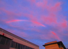 Sunrise Cloud Rainbow 002 (gallftree008) Tags: sunrise suburb cloud county codublin clouds cloudsstormssunsetssunrises cloudbase red rainbow sky nature naturesbeauties naturescreations dublin ireland eire autumn