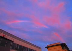 Sunrise Cloud Rainbow 002 (gallftree008) Tags: sunrise suburb cloud county codublin clouds cloudsstormssunsetssunrises cloudbase red rainbow sky nature naturesbeauties naturescreations dublin ireland eire autumn