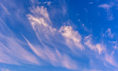 Singing Clouds (johnjmurphyiii) Tags: clouds connecticut dawn originalnef shelly sky summer tamron18270 usa cirrus johnjmurphyiii cloudsstormssunsetssunrises cloudscape weather nature cloud watching photography photographic photos day theme light dramatic outdoor color colour