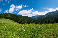 f00072 Slovenia (fmatuzawa) Tags: slovenia eslovenia nature mountains forest