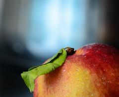 Nectarine (http://richard-m.myportfolio.com/) Tags: fruit nectarine water droplets flash nikon d7000