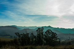 Silver Peaks (Ian@NZFlickr) Tags: silver peaks afternoon winter dunedin hills trees clouds otago nz