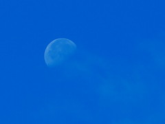 blue moon (Darek Drapala) Tags: blue moon panasonic panasonicg5 sky skyskape lumix light nature