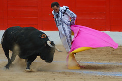 Taurino-2 (GonzalezNovo) Tags: pwmelilla feriademelilla melilla plazadetorosdemelilla corrida detoros tejada torero