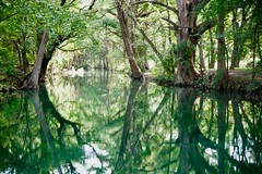 He leadeth me... (malcolmharris64) Tags: cypress creek wimberley texas springs streams rivers reflections