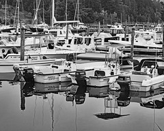 Bar Harbor, Maine 3-1bw (sandytaylornyc) Tags: boat boats marina sailboat sailboats maine usa barharbor mountdesertisle mdi water reflection atlantic ocean sea harbor sjt trees tree mooring moorings blackandwhite horizontal