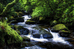 "Torc Waterfall downstream, Killarney National Park, Ireland • <a style=""font-size:0.8em;"" href=""http://www.flickr.com/photos/40136671@N06/7745987134/"" target=""_blank"">View on Flickr</a>"