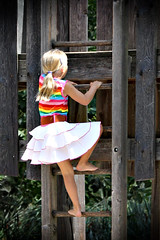 step it up (followtheseinstructions) Tags: girl up playground step ladder higher pca219