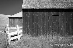 Barns and Fence (tom911r7) Tags: california leica wood blackandwhite bw white black grass barn thomas fences petaluma s2 brichta tom911r7 thomasbrichta