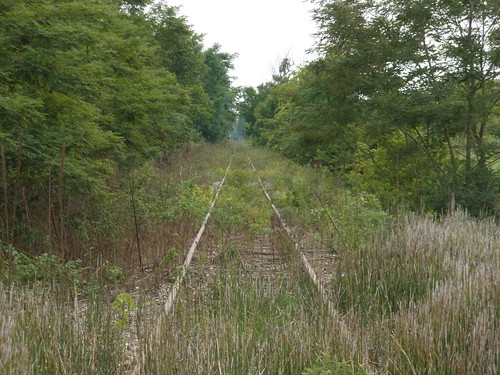 Former WLE(owned by Ohio Central RR) looking west