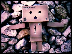 On the rocks (ghostsecurity28) Tags: fun toy japanese play danbo danboard