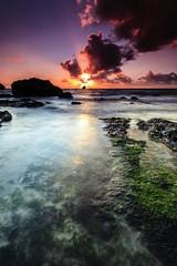 Trevellas Sunset [Explored] (Martin Mattocks (mjm383)) Tags: ocean longexposure pink sunset red sun seascape seaweed reflection green water clouds canon cornwall horizon explore coastline singhray leefilters canoneos5dmarkii cornwalllandscapes mjm383 martinmattocksphotography