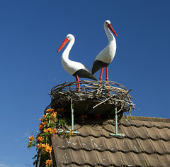 Storks - bit of Polish nostalgia! (Anna Calvert Photography) Tags: roof house birds nest statues ornaments storks