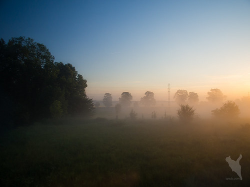 チェコの朝靄