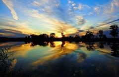 Indiana Farm Pond (1suncityboi) Tags: sunset sky reflection clouds awesome stunningskies mygearandme rememberthatmomentlevel4 rememberthatmomentlevel1 rememberthatmomentlevel2 rememberthatmomentlevel3 dscw690 rememberthatmomentlevel5 rememberthatmomentlevel6 vigilantphotographersunite vpu2