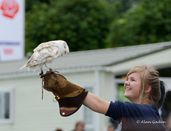 Delighted young lady gets to hold an owl (Redoux) Tags: show park flower nature girl victoriapark nikon bokeh feather victoria owl southport 2012 rspb southportflowershow vr18200 d7000