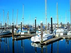 "Bellingham Harbor • <a style=""font-size:0.8em;"" href=""http://www.flickr.com/photos/59137086@N08/7874403464/"" target=""_blank"">View on Flickr</a>"