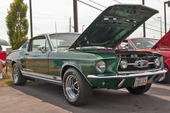 1967 Mustang Fastback (Muncybr) Tags: columbus ohio green ford pony 1967 mustang krieger fastback mustangclubofamerica 428cobrajet mustangclubofohio allmustangshow photographedbybrianmuncy chuckprinz