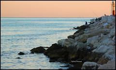 29.08.12 (*Sylviè) Tags: morning summer sun girl sunrise photo perfect flickr photographer alba porto molo marche 2012 mattina agoust sanbenedettodeltronto giorno regione
