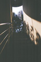 Stairway (MaskedPanda) Tags: shadow film stairs 35mm la lomo lomography sardina stairway fujifilm domino toycam