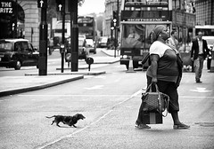 follow mama (White_V) Tags: road street woman dog man bus london lady canon walking taxi streetphotography wb bags ritzhotel whiteandblabk followiing followmama