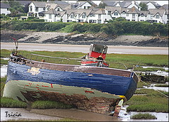 Bit of a puzzle ? (Patricia Speck) Tags: houses sea sky water graveyard grass landscape dead boat seaside moss inlet tricia patricia decaying speck barryisland mudflaps mygearandme lookslikeapieceofthepuzzleismissing