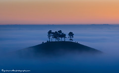 Inspirational Morning : Colmers Hill (grahamwiffen) Tags: trees orange mist misty fog sunrise dawn golden nikon glow hill foggy 11 dorset ethereal dreamy teaching inspirational 70200 hilltop bridport courses tuition mists uplifting mistymorning oneonone wiffen colmershill marshwoodvale d7000 quarrhill