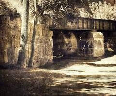 the bridge (JoyceCorey) Tags: artshow soe imagemanipulations ecoledesbeauxarts flickrians finegold hongkongphotos artisticexpressions beautyispower contemporaryartsociety uniquecreations shockofthenew flickrhearts flickraward newreality theunforgettablepictures goldstaraward thebestshot afeastformyeyes sharingart theawardtree dragonflyawards flickrunited photosick thehypotheticalawards flickrsgottalent atyourbest worldofdisturbia trarealtaesogno artnetflickrworld shieldofexcellencelevel1 crazygeniusesshot kforkerkirasart improwisaispirazione artwithpassion imageportraitgallery artistoftheyearlevel2 updateartcollection musictomyeyeslevel1 allmagicspecialeffects soulophotographylevel1 youthinkthisisart awesomelycreativeforedinei creativephotogroupbasic soulocreativitylevel1 thestickybeakawards flickrunofficial