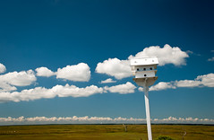 home for the birds (Anitab) Tags: sky clouds birdhouse marshes wetlandsinstitute