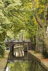 Nieuwe Gracht in Utrecht (Astrid Photography.) Tags: bridge trees summer reflection water netherlands canal utrecht quay autumncolors gracht bycicle nieuwegracht reflectie beechtrees coth supershot bej astridphotography treesubject coth5