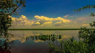 3.- Llanos del Orinoco
