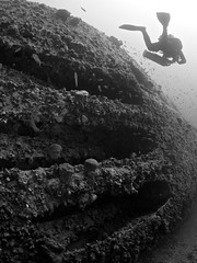 HMS Stubborn (oisingormally) Tags: world two war tech tubes diving malta submarine bow torpedo wreck sclass hmsstubborn p238wreck