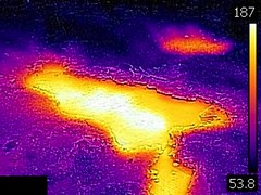 Thermal image of Sulphide Spring (morning, 11 June 2016) 2 (James St. John) Tags: sulphide spring geyser hill group upper basin yellowstone hotspot volcano wyoming hot springs thermal image temperature