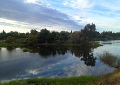 Good Morning (Professional Photography & Videography) Tags: california ca morning forest river view sacramento goodmorning americanriver goodtime goodday amazingview