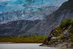 Encroaching glacier (Notkalvin) Tags: juneau alaska mendenhallglacier mendenhall glacier ice frozen lake mountain notkalvin mikekline notkalvinphotography iceage cruise greektowncasino royalcaribbean blueice