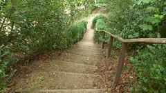 Prior Park Gardens , Bath (neiljennings51) Tags: prior park gardens bath national trust