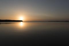 El broche de oro. (fffrancis) Tags: nikon d750 sigma2435mmf20 art paisaje atardecer sol albufera valencia fffrancis agosto 2016
