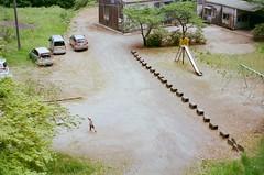07380009 (hokkai7go) Tags: film olympus om1